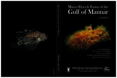 Macro Flora & Fauna of the Gulf of Mannar a checklist